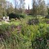 Thurmanin puisto Kauniainen (11)